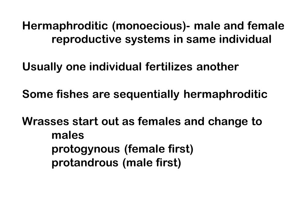 Hermaphroditic (monoecious)- male and female