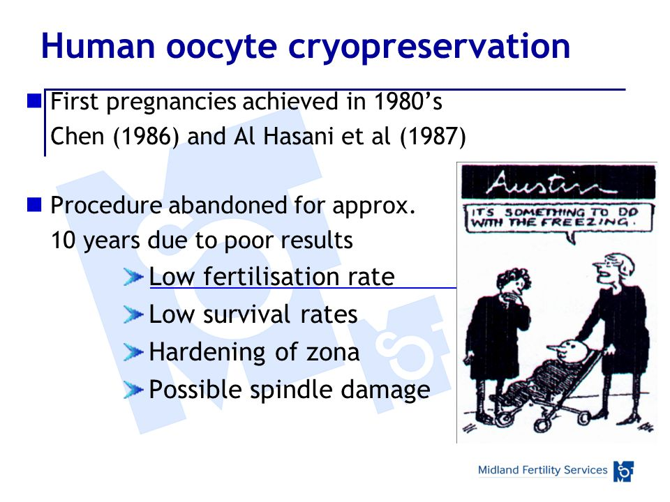 Human oocyte cryopreservation