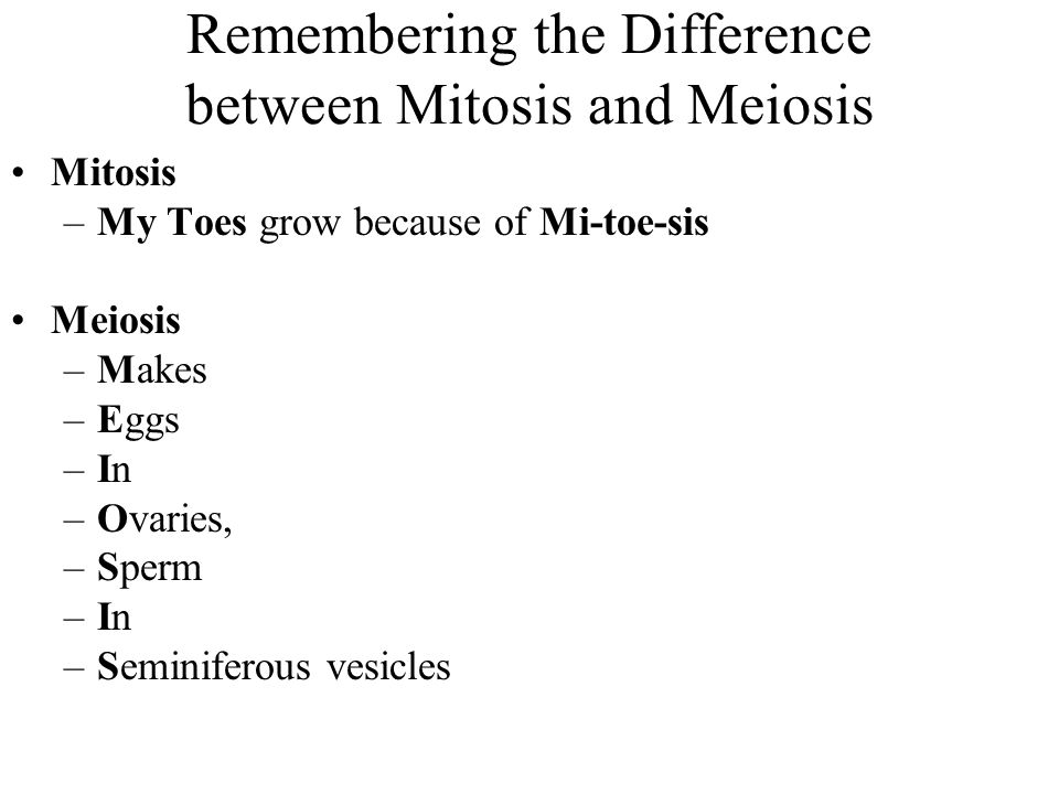 Remembering the Difference between Mitosis and Meiosis