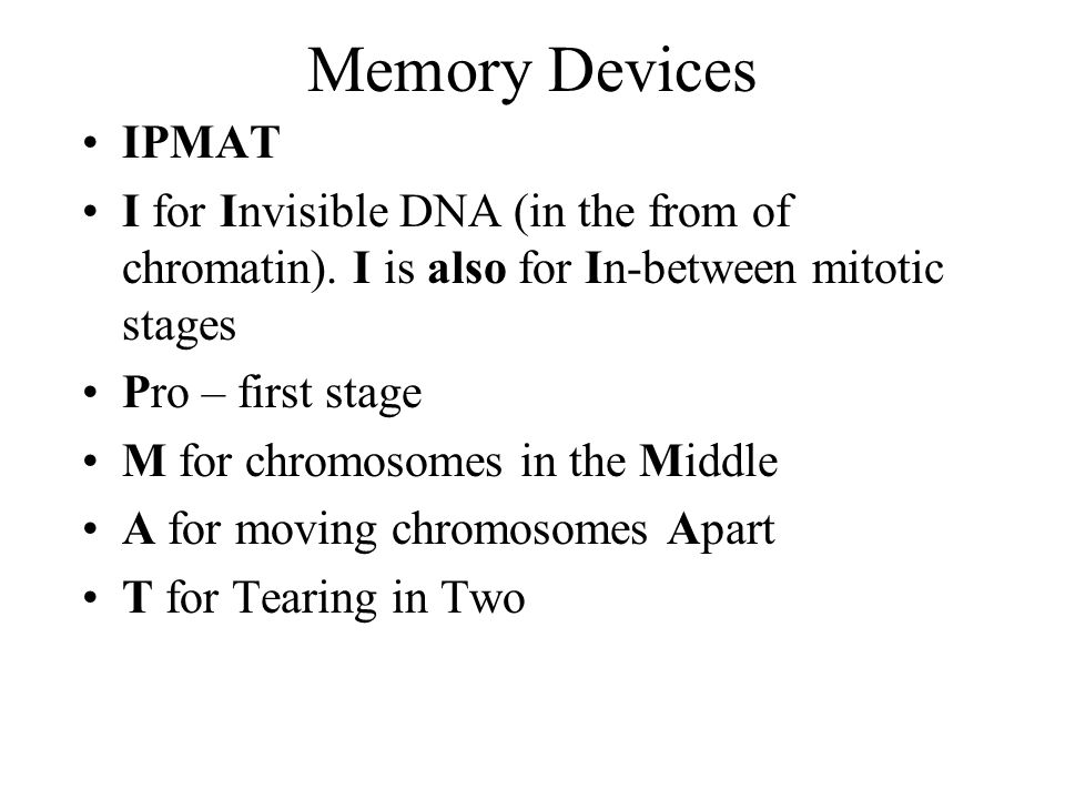 Memory Devices IPMAT. I for Invisible DNA (in the from of chromatin). I is also for In-between mitotic stages.