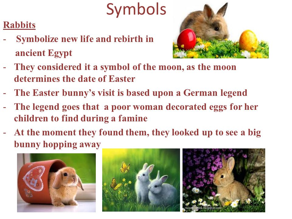 Symbols Rabbits - Symbolize new life and rebirth in ancient Egypt