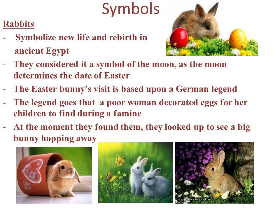 Symbols Rabbits - Symbolize new life and rebirth in ancient Egypt