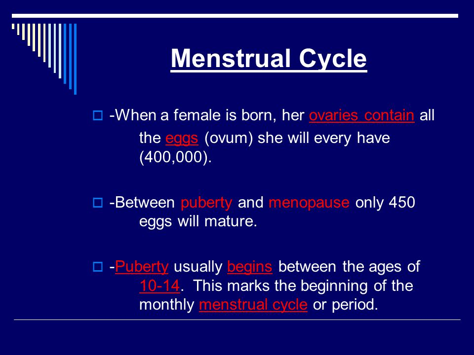 Menstrual Cycle -When a female is born, her ovaries contain all