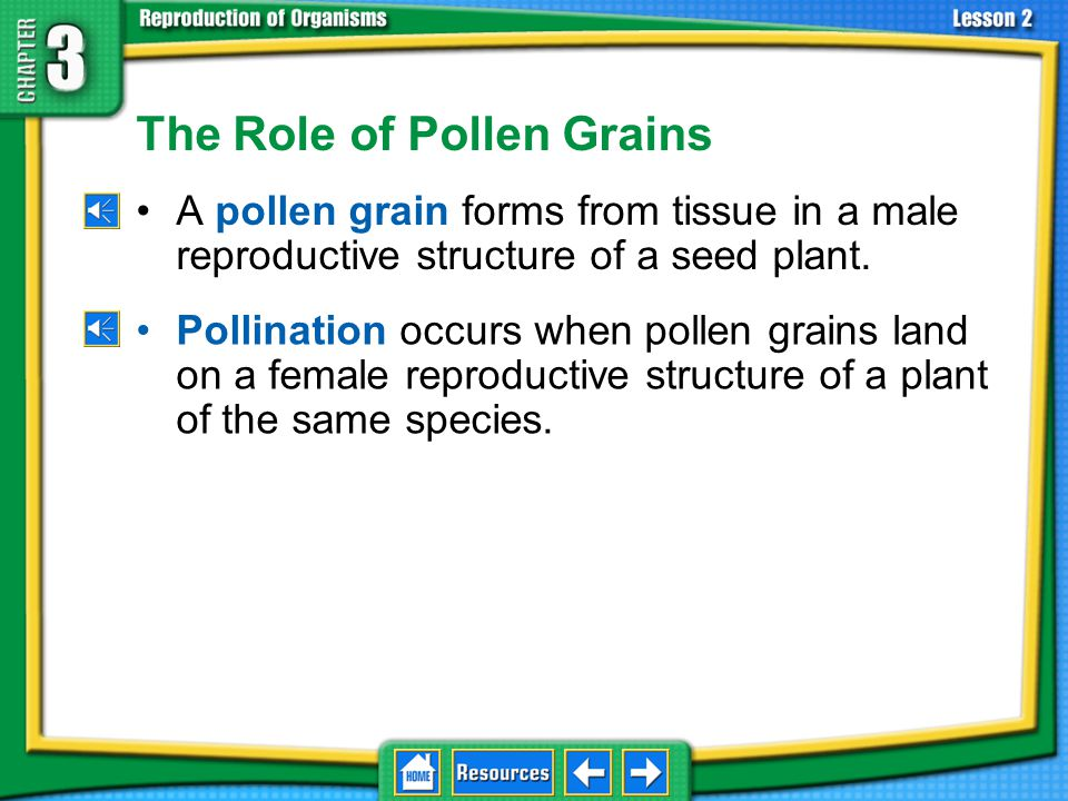 The Role of Pollen Grains