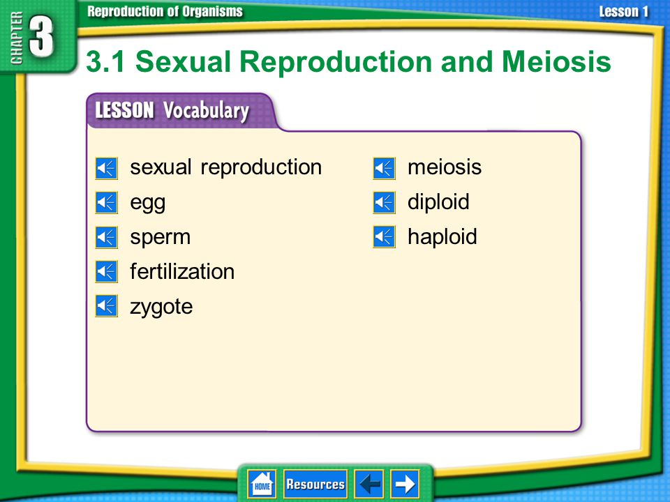 3.1 Sexual Reproduction and Meiosis