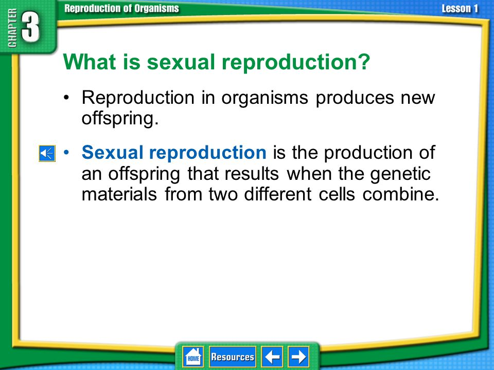 What is sexual reproduction