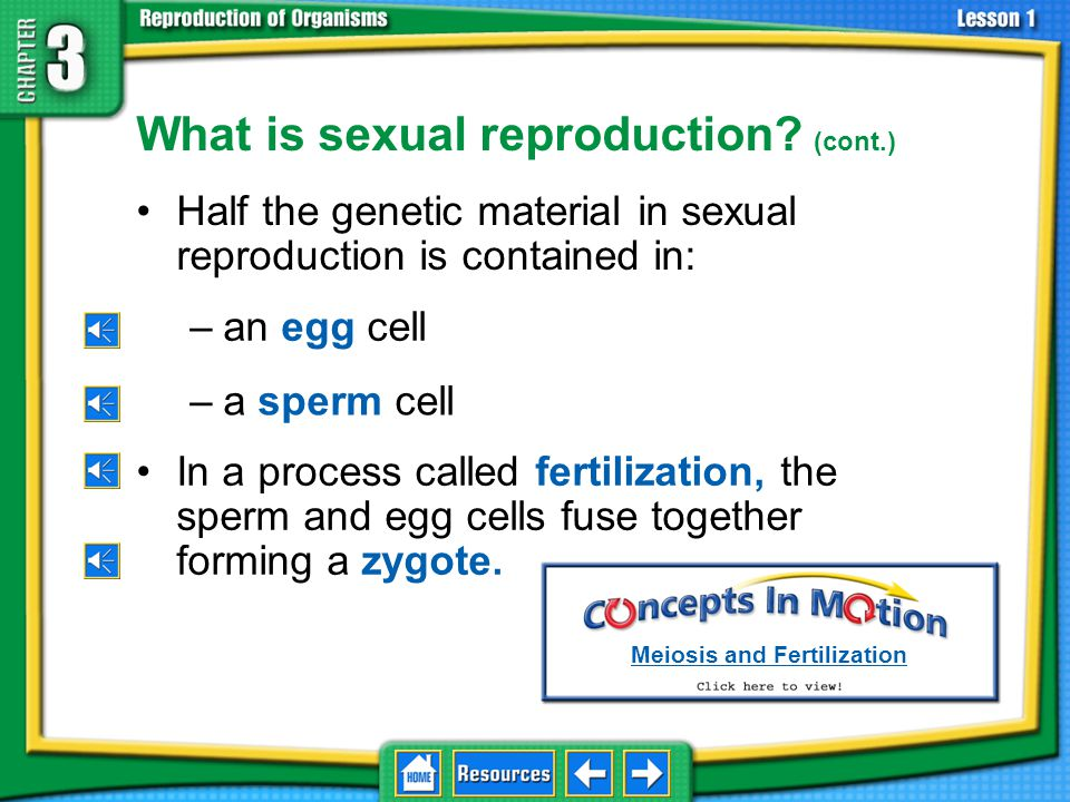 What is sexual reproduction (cont.)