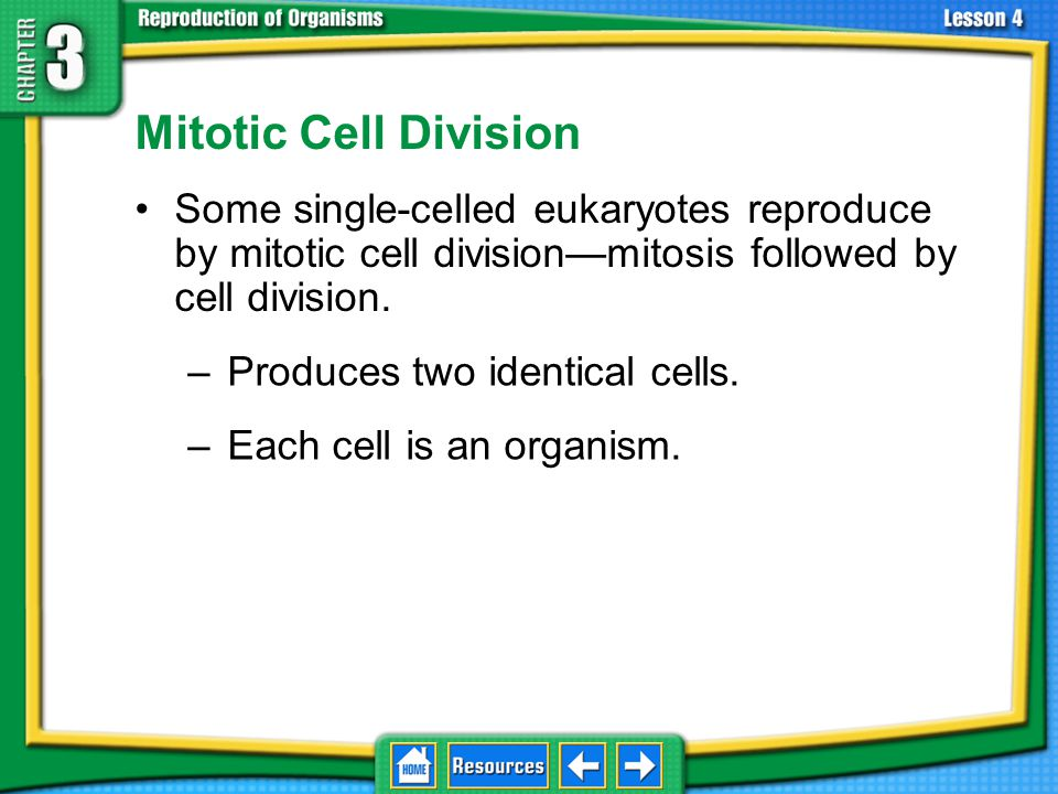 3.4 Asexual Reproduction Mitotic Cell Division. Some single-celled eukaryotes reproduce by mitotic cell division—mitosis followed by cell division.
