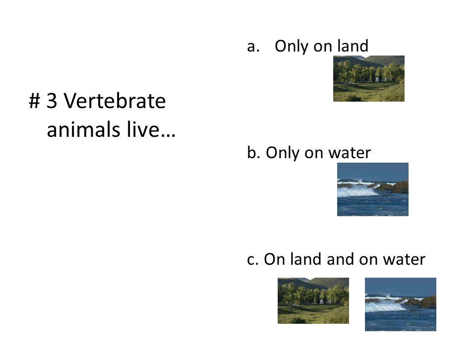 # 3 Vertebrate animals live…