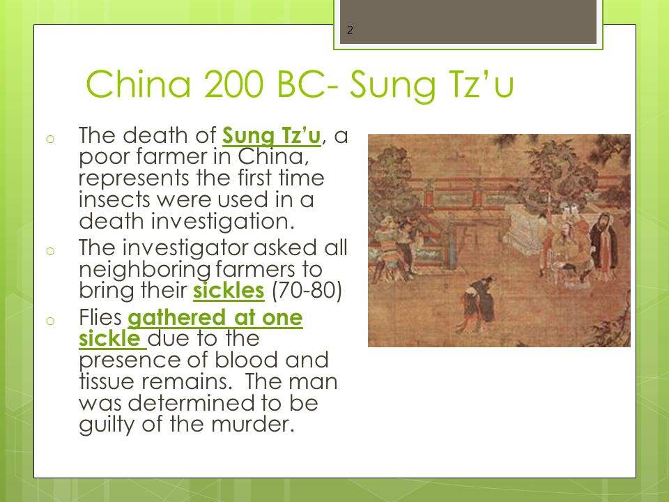 China 200 BC- Sung Tz'u The death of Sung Tz'u, a poor farmer in China, represents the first time insects were used in a death investigation.