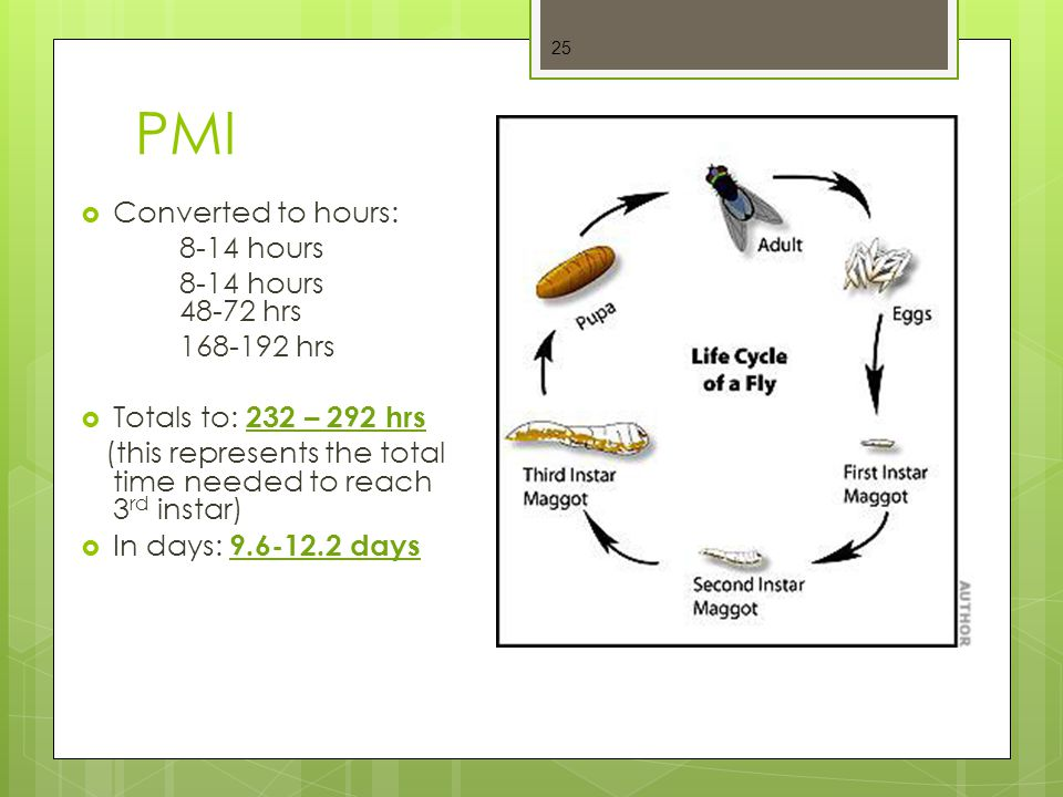PMI Converted to hours: 8-14 hours 8-14 hours 48-72 hrs 168-192 hrs