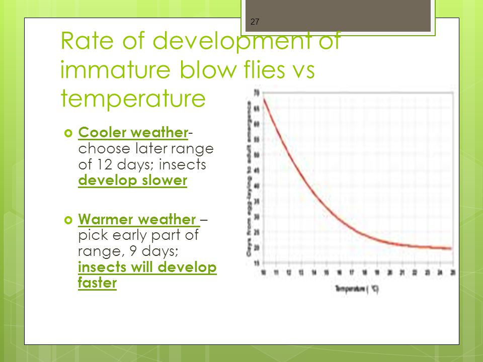 Rate of development of immature blow flies vs temperature