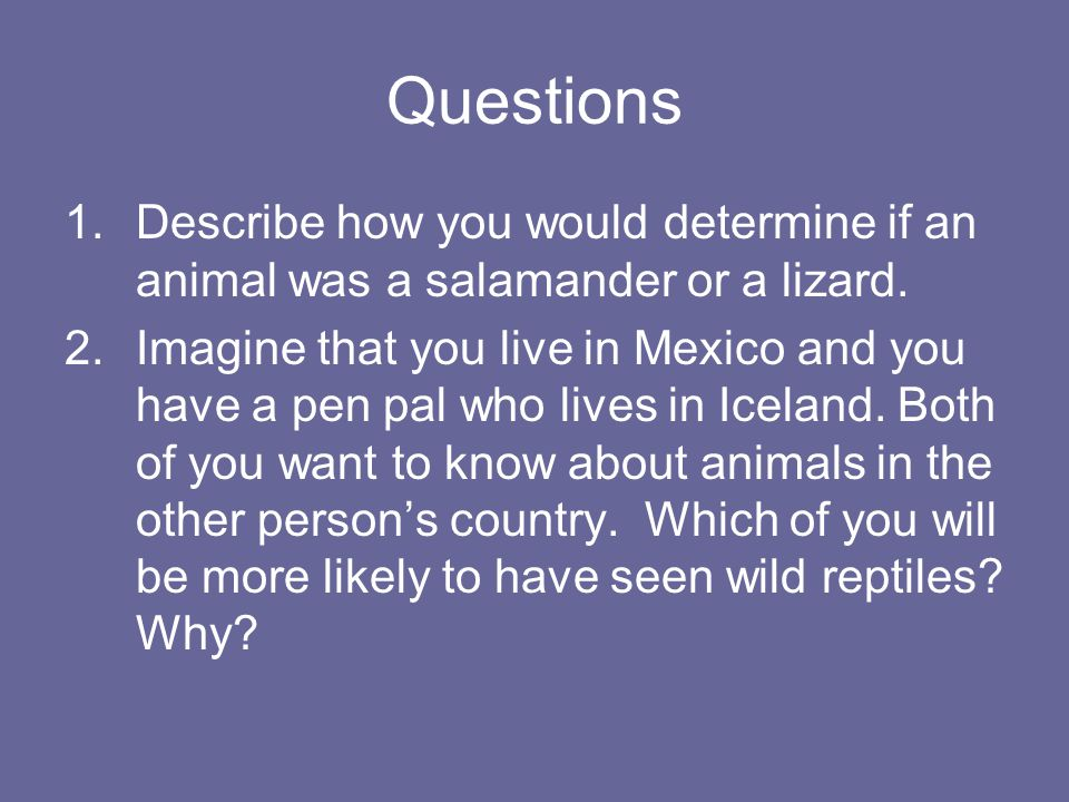 Questions Describe how you would determine if an animal was a salamander or a lizard.
