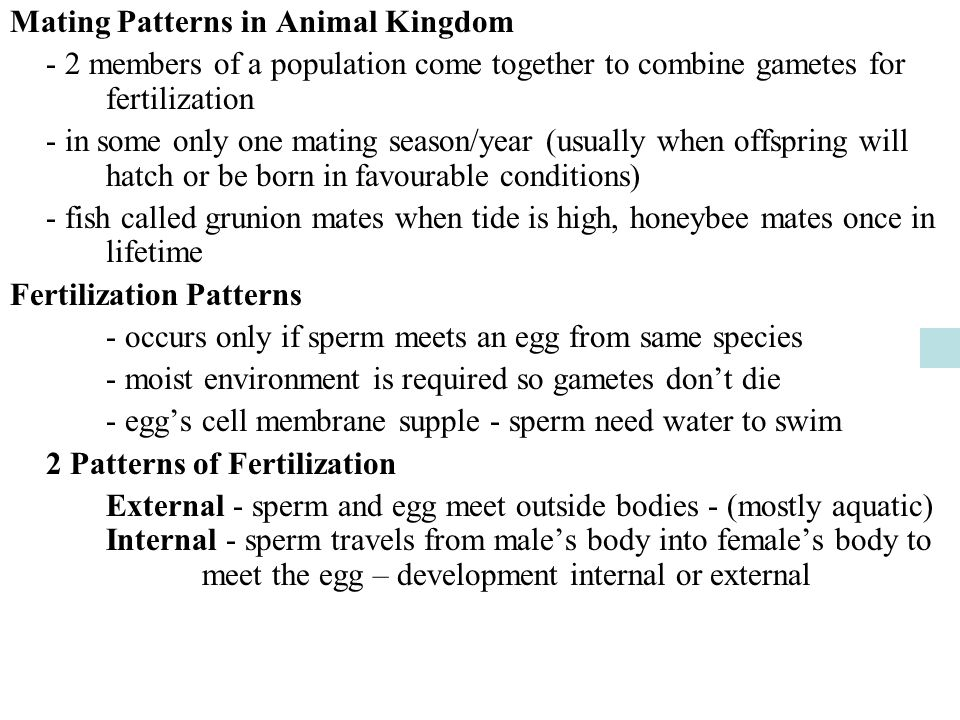 Mating Patterns in Animal Kingdom