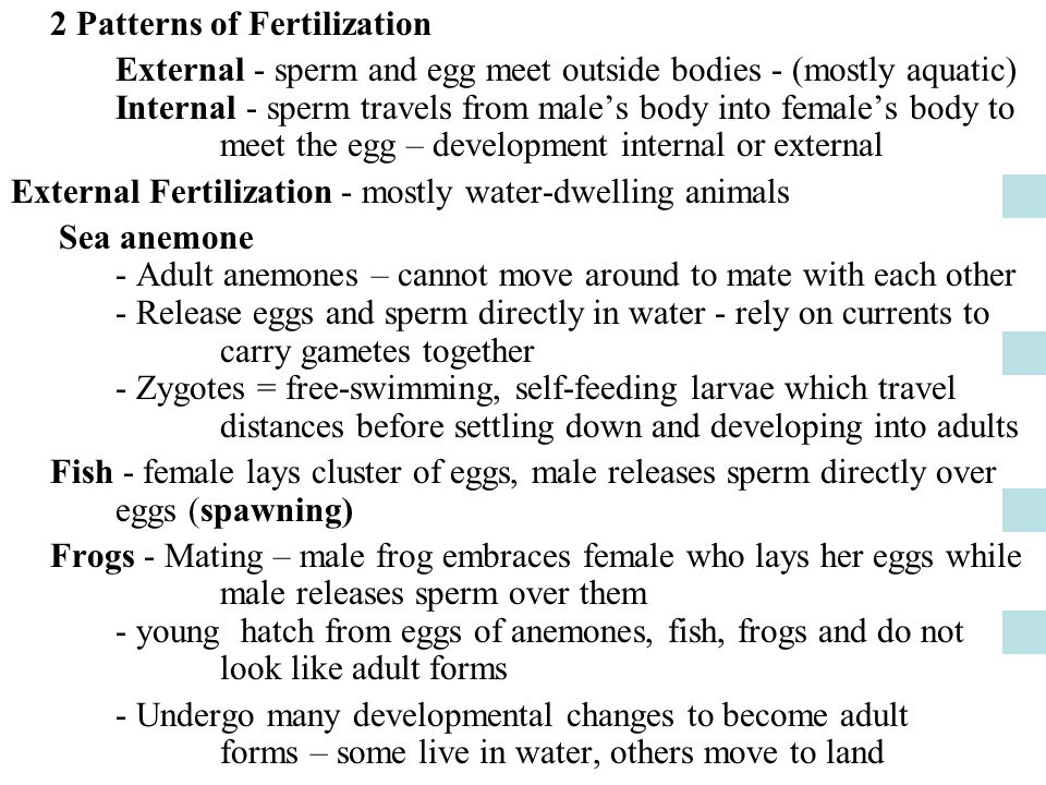2 Patterns of Fertilization