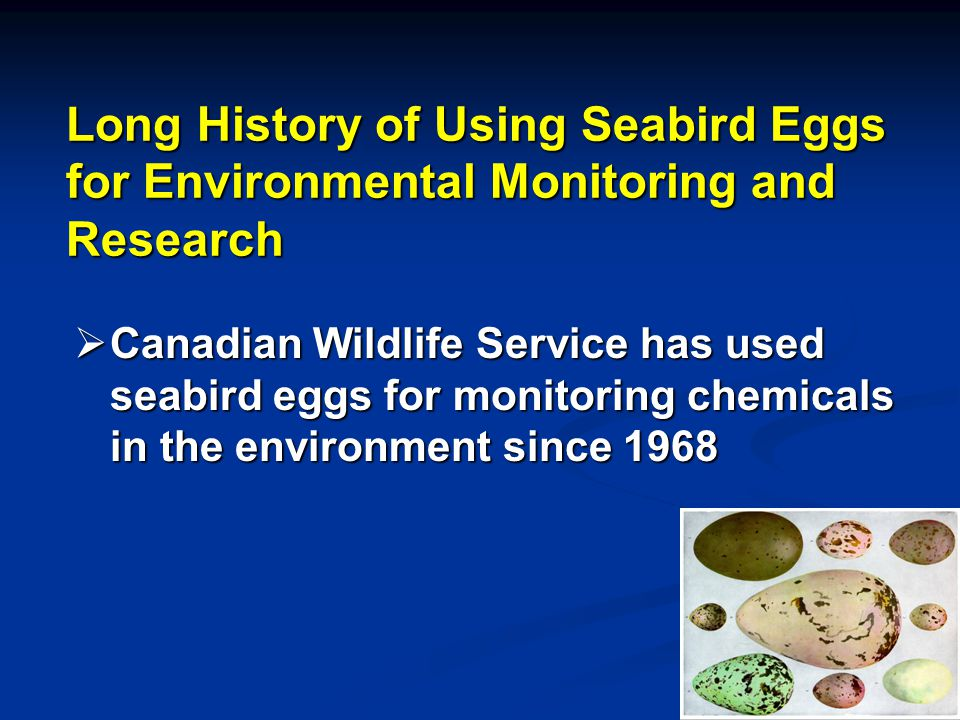 Long History of Using Seabird Eggs for Environmental Monitoring and Research