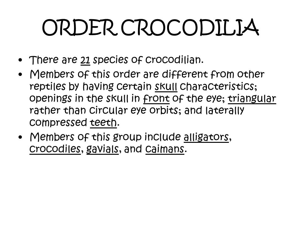 ORDER CROCODILIA There are 21 species of crocodilian.