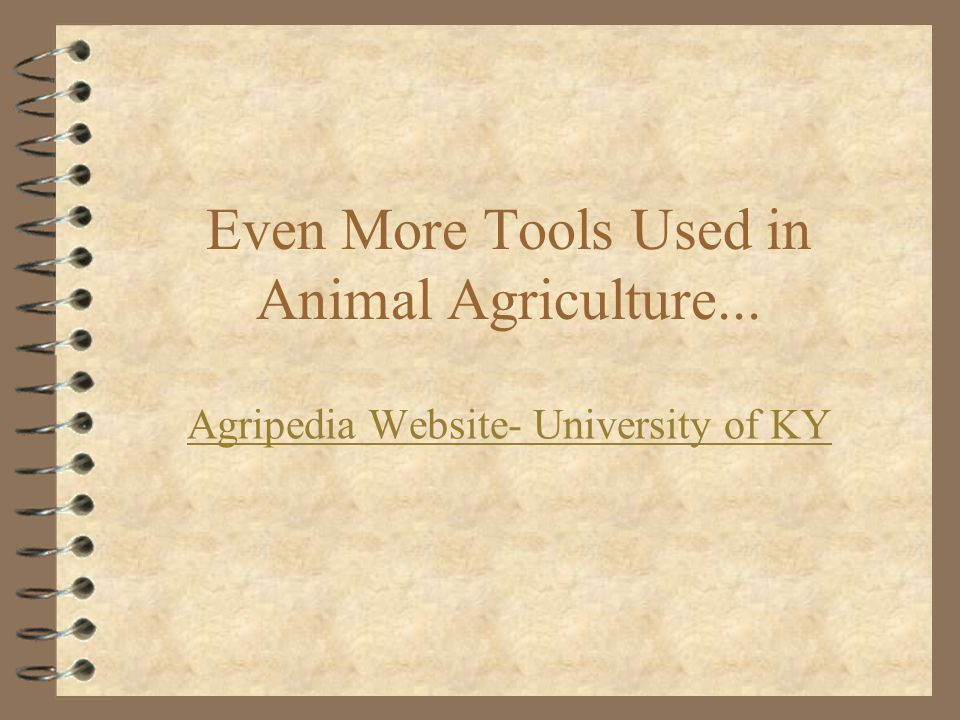 Even More Tools Used in Animal Agriculture...