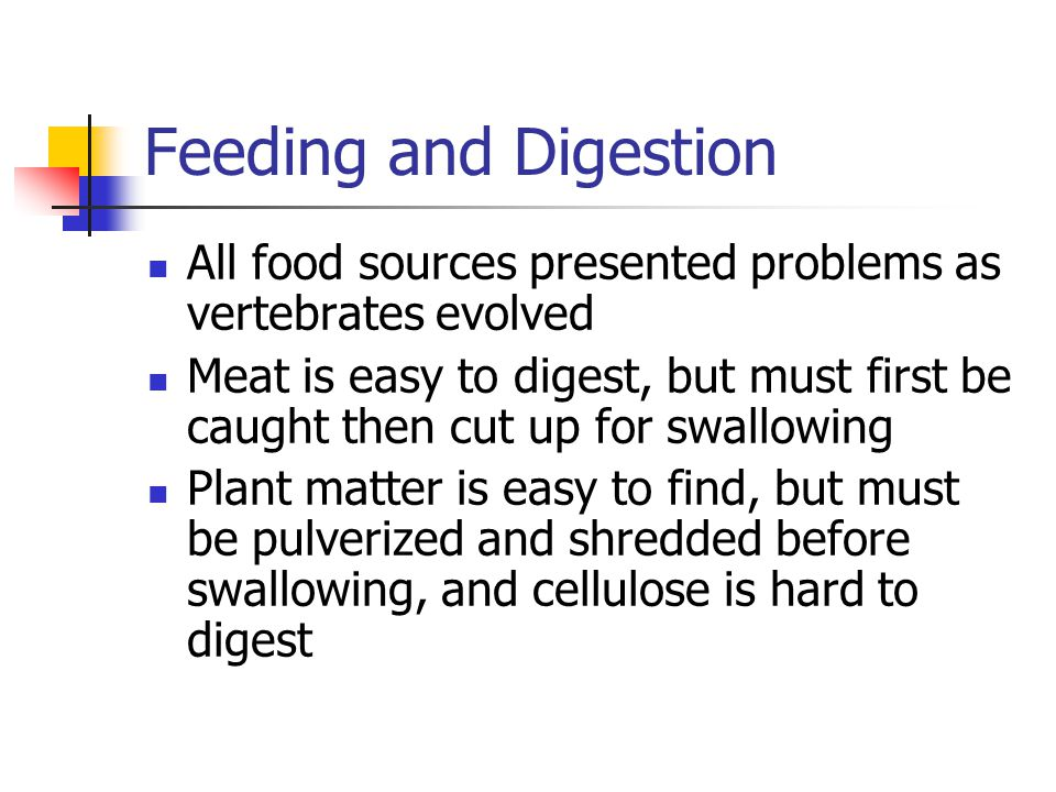 Feeding and Digestion All food sources presented problems as vertebrates evolved.