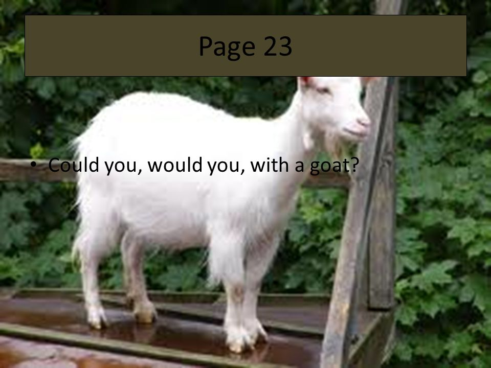 Page 23 Could you, would you, with a goat
