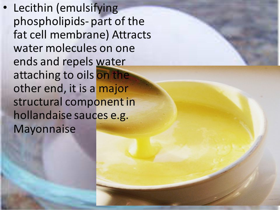 Lecithin (emulsifying phospholipids- part of the fat cell membrane) Attracts water molecules on one ends and repels water attaching to oils on the other end, it is a major structural component in hollandaise sauces e.g.