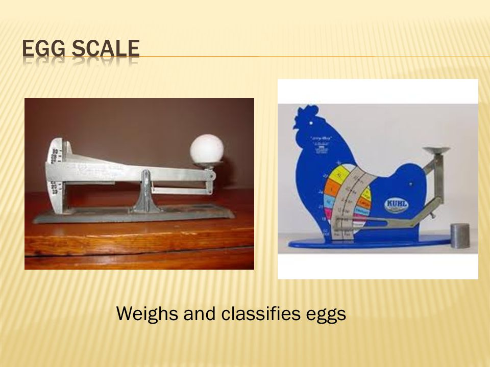 Egg Scale Weighs and classifies eggs