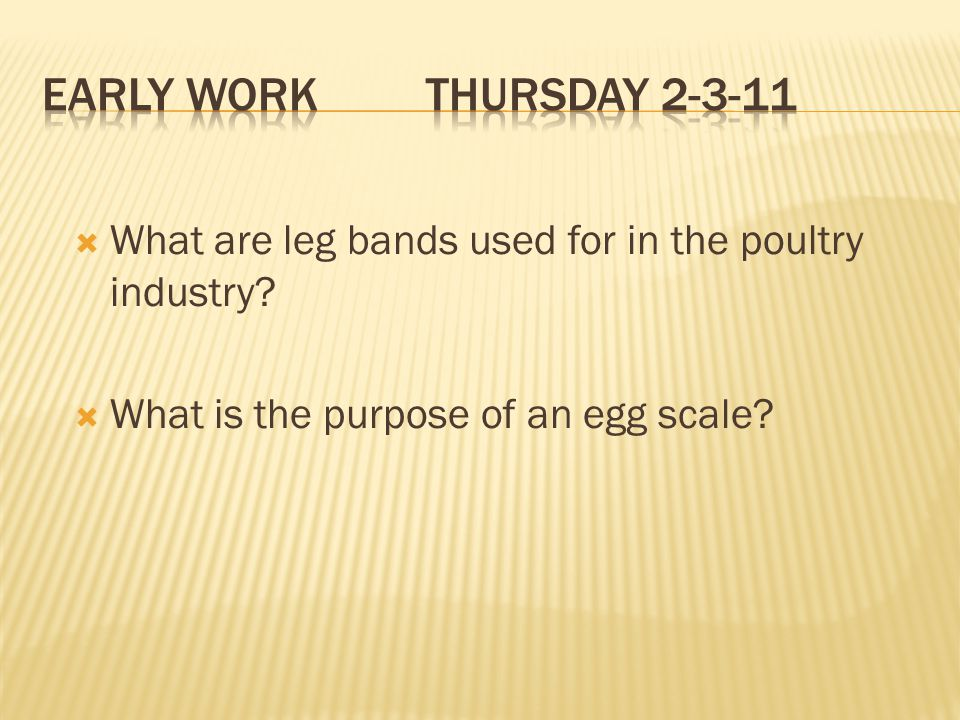 Early Work Thursday 2-3-11 What are leg bands used for in the poultry industry.