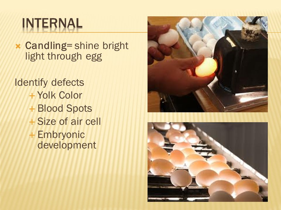 Internal Candling= shine bright light through egg Identify defects