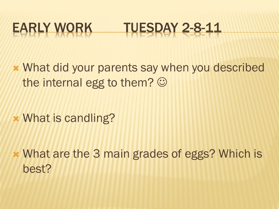 Early Work Tuesday 2-8-11 What did your parents say when you described the internal egg to them 