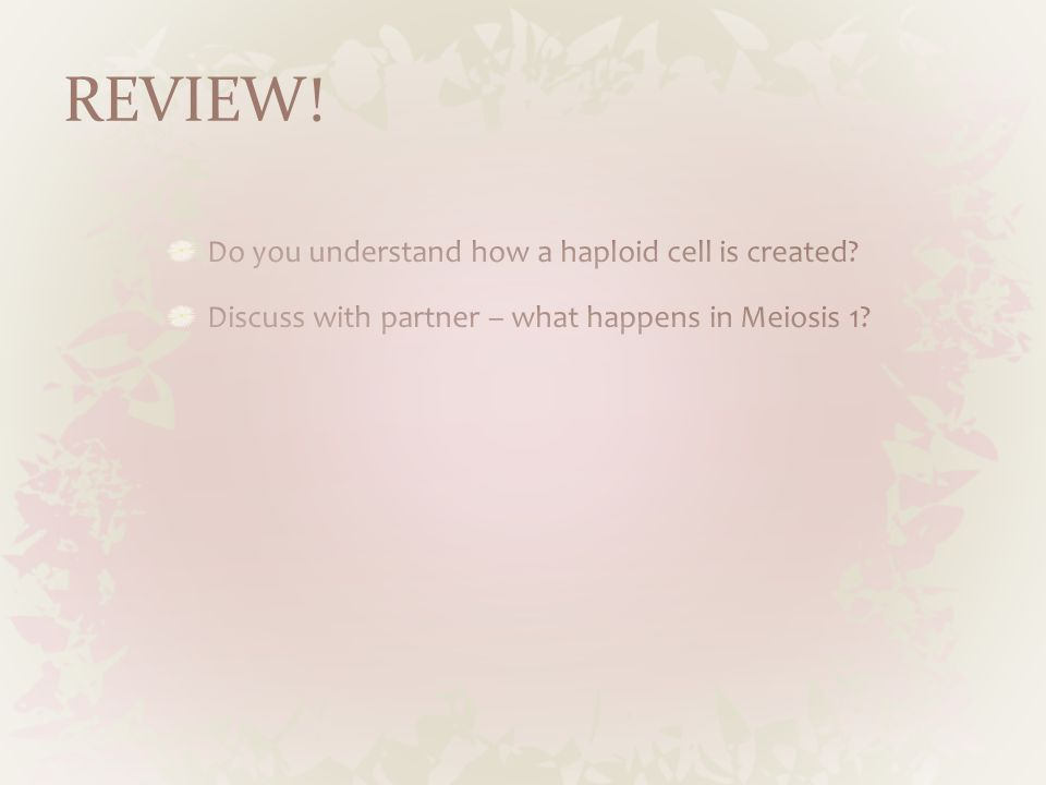 REVIEW! Do you understand how a haploid cell is created