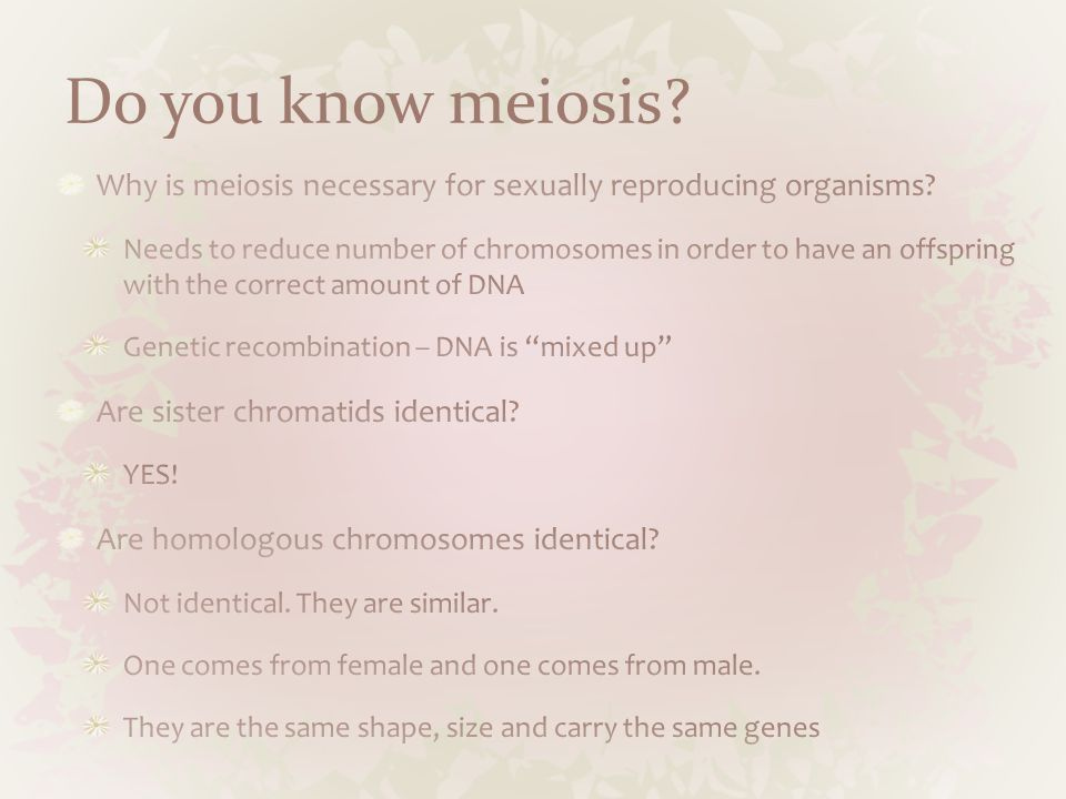 Do you know meiosis Why is meiosis necessary for sexually reproducing organisms