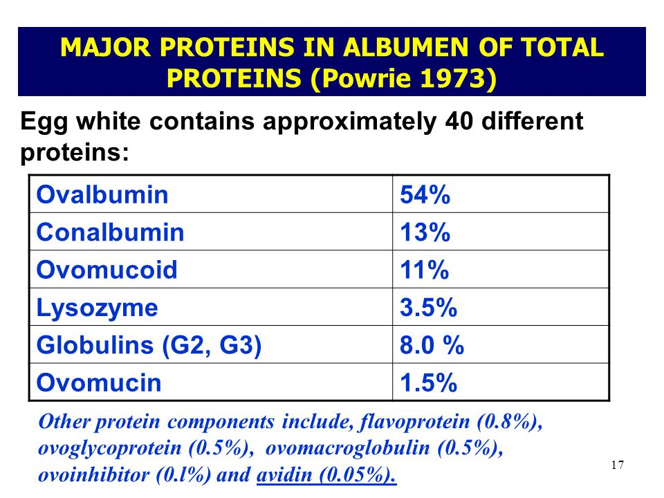 MAJOR PROTEINS IN ALBUMEN OF TOTAL PROTEINS (Powrie 1973)