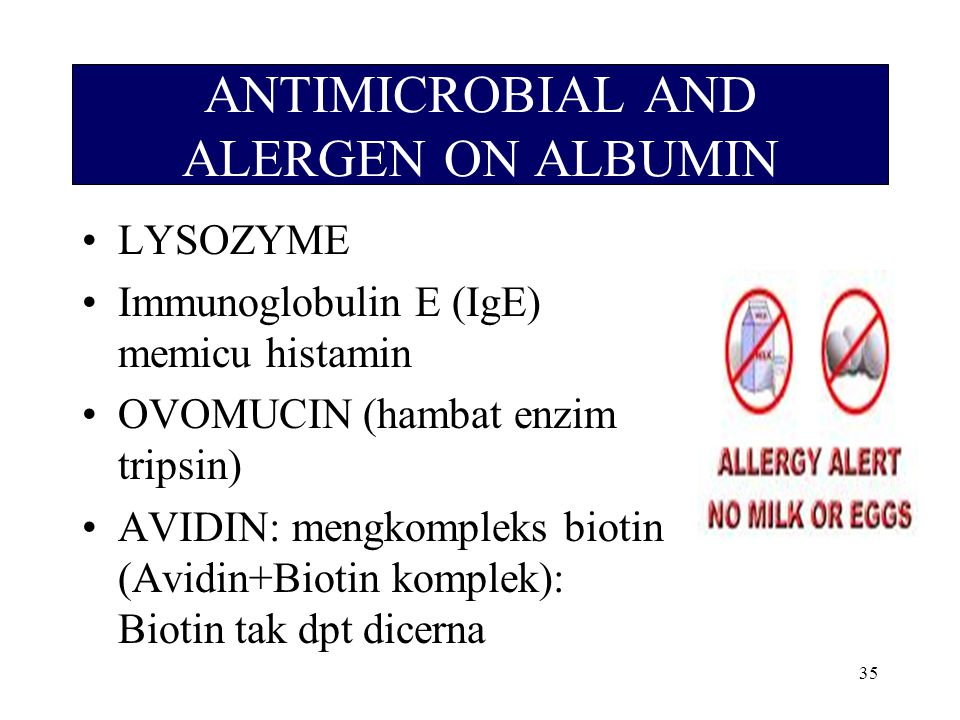 ANTIMICROBIAL AND ALERGEN ON ALBUMIN
