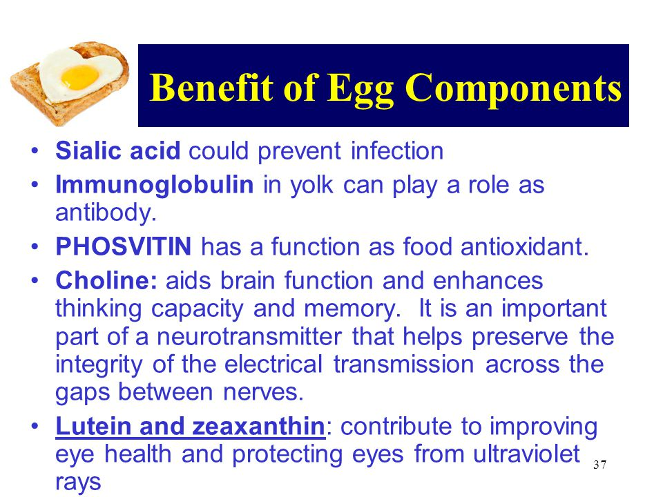 Benefit of Egg Components