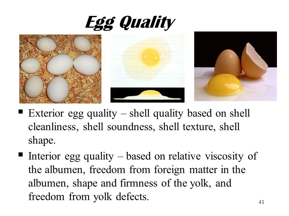 Egg Quality Exterior egg quality – shell quality based on shell cleanliness, shell soundness, shell texture, shell shape.