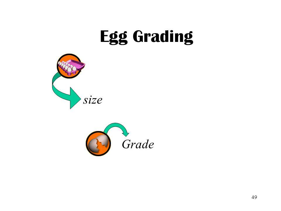 Egg Grading size Grade