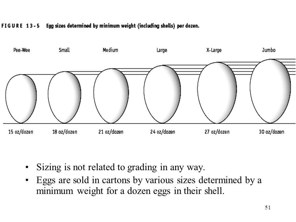 Sizing is not related to grading in any way.