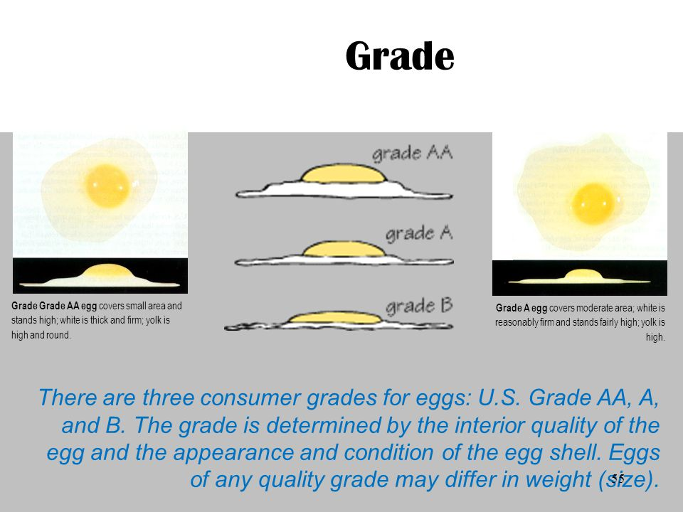 Grade Grade Grade AA egg covers small area and stands high; white is thick and firm; yolk is high and round.