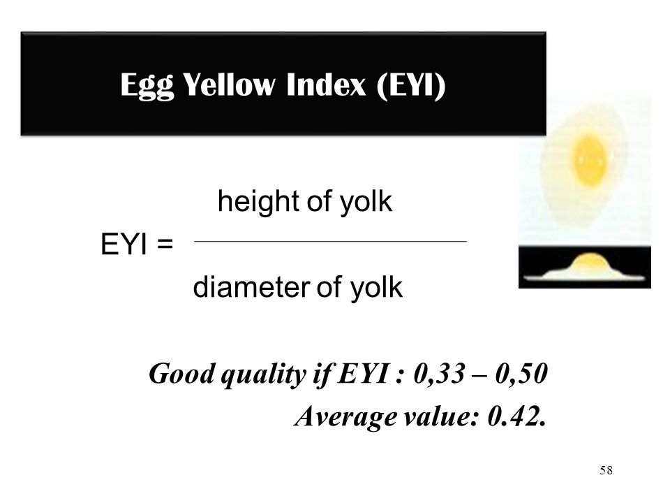 Egg Yellow Index (EYI) height of yolk EYI = diameter of yolk