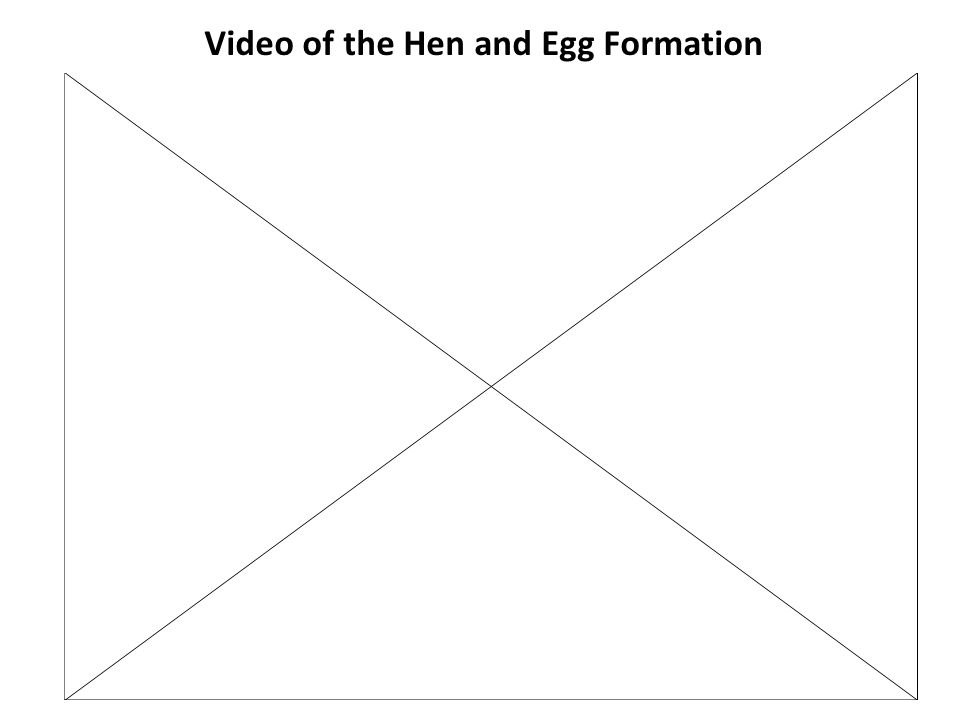 Video of the Hen and Egg Formation