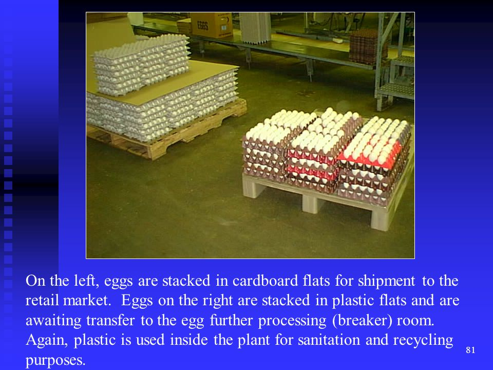 On the left, eggs are stacked in cardboard flats for shipment to the retail market.
