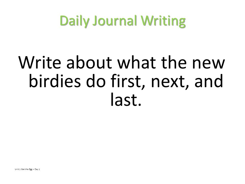 Write about what the new birdies do first, next, and last.