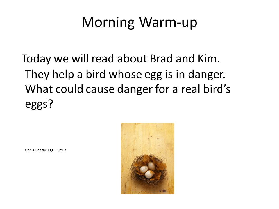 Morning Warm-up Today we will read about Brad and Kim. They help a bird whose egg is in danger. What could cause danger for a real bird's eggs