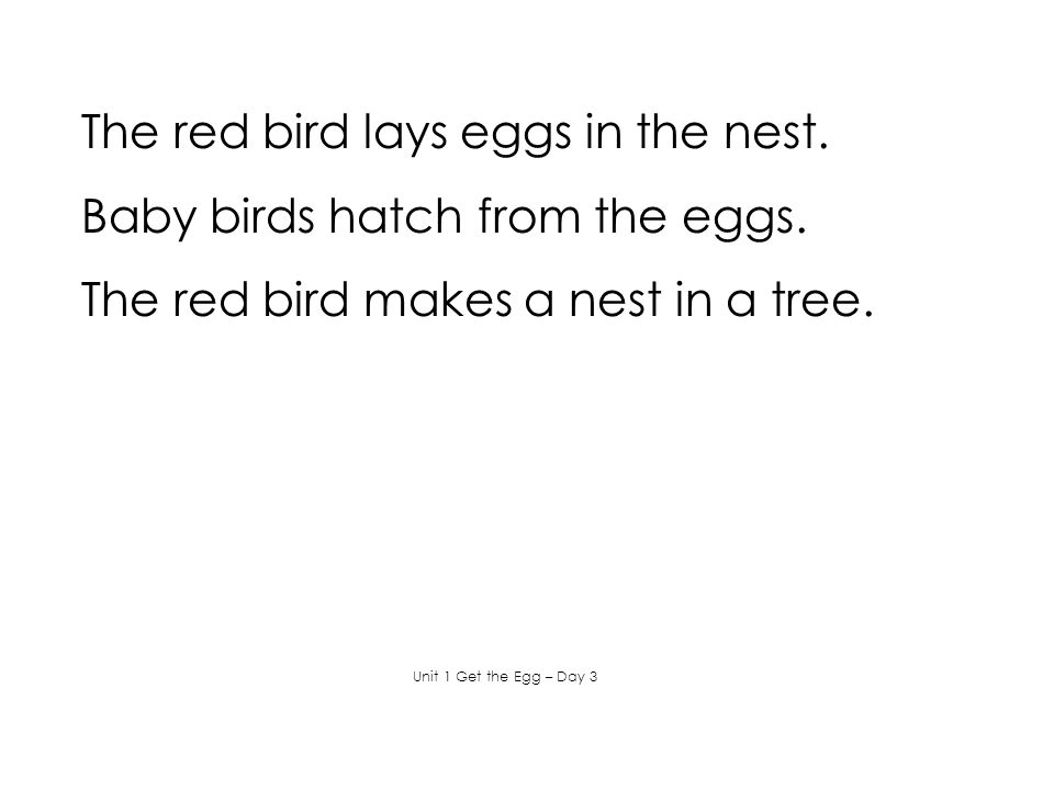 The red bird lays eggs in the nest. Baby birds hatch from the eggs.