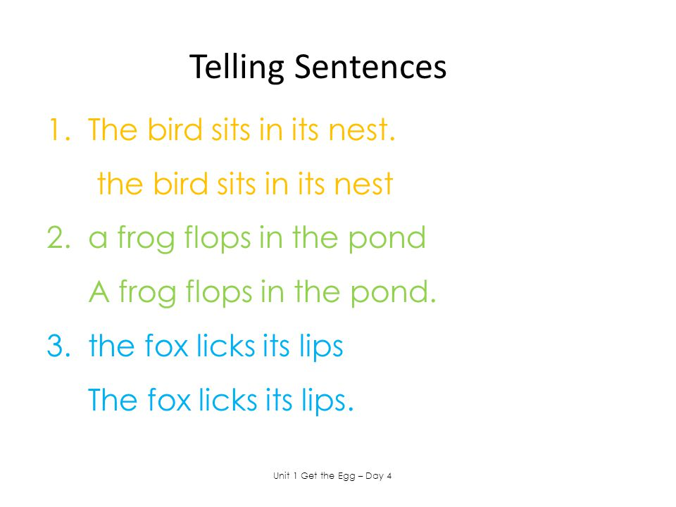 Telling Sentences 1. The bird sits in its nest.