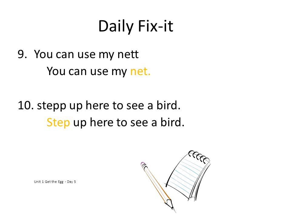 Daily Fix-it You can use my nett You can use my net.