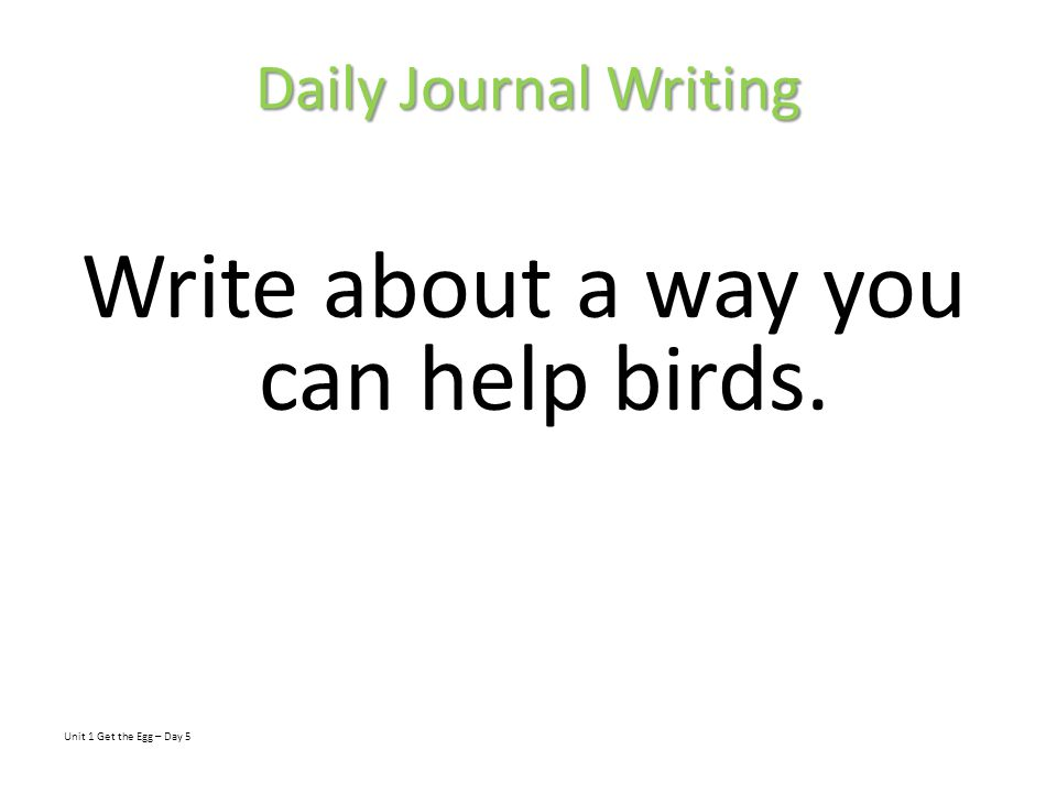 Write about a way you can help birds.