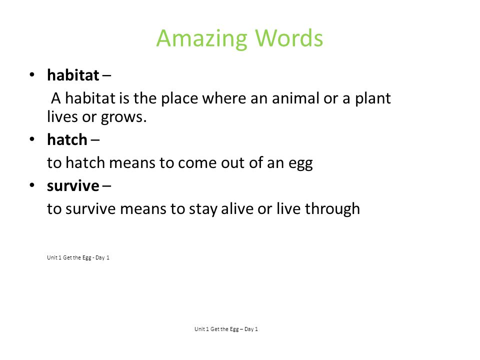 Amazing Words habitat –