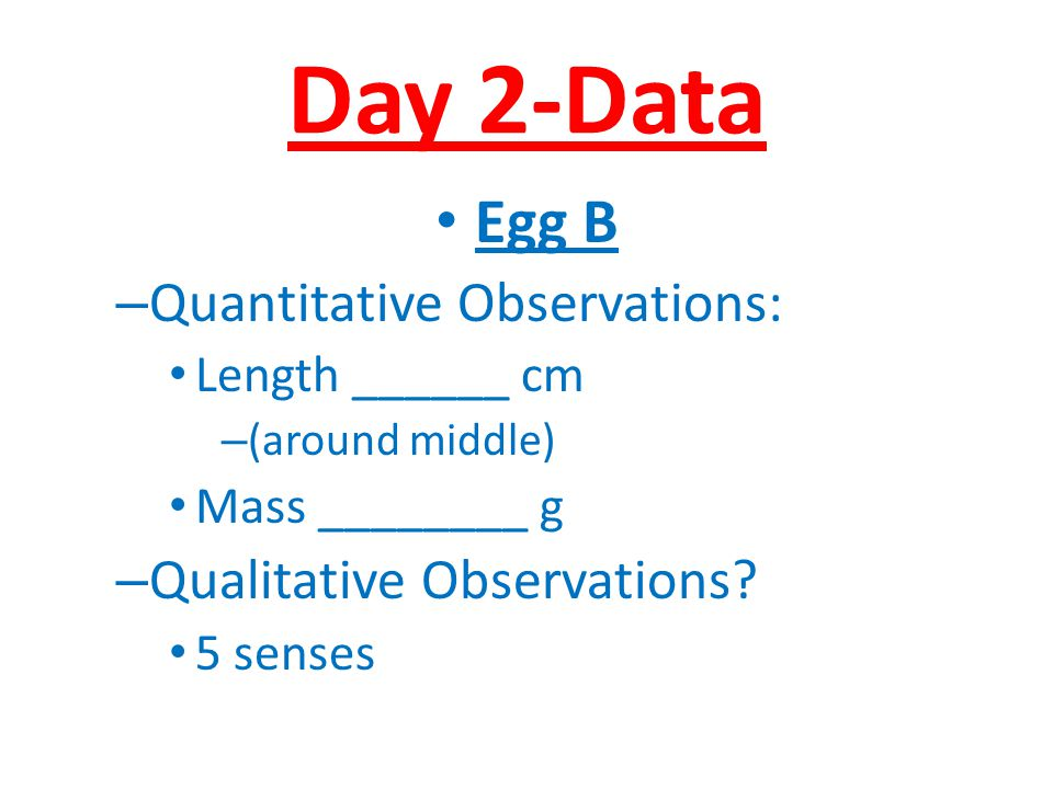 Day 2-Data Egg B Quantitative Observations: Qualitative Observations