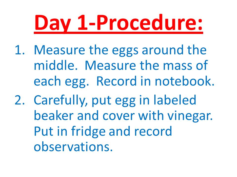 Day 1-Procedure: Measure the eggs around the middle. Measure the mass of each egg. Record in notebook.